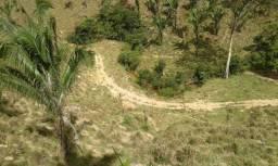 Fazenda 25 alqueires em Niquelândia** acesso por água fria 70km