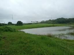 Granja com 11 hectares na região de Monte Alegre estruturada