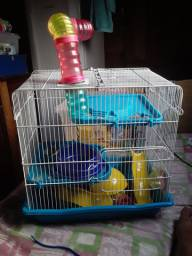 Troca casa para hamster