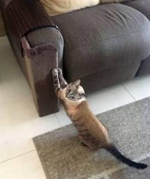 arranhador de gato canto de sofá - juta