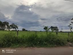 Vendo terreno em Cardoso