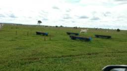 Fazenda com 3509 hectares no Mato Grosso do Sul