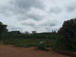 50 Hectares