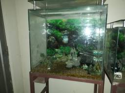 Vendo aquário 210 L