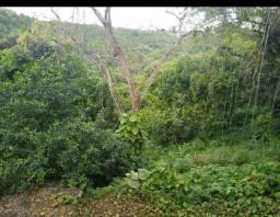 Propriedade 59 hectares próx. Br 101 (não é posse)