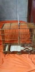 Vendo gaiola niquelada so Rs 30,00 - 9  *