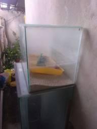 2 aquários - Semi novos