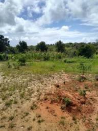 Vende-se fazenda com 9 equitare, em Barra do Pojuca no jóia de Itacimirim