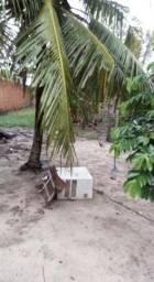 Casa com terreno urgente em paracuru