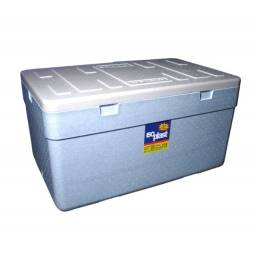 Caixa de isopor (175)
