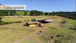 Atibaia SP Sítio 129.000 m² Alqueires AC/Permuta em Atibaia Ref. 009-JAN-002