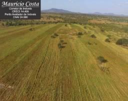Fazenda à Venda em Jeremoabo - Bahia - Área com Potencial para Plantio e Criação