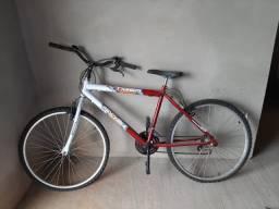 Bicicleta Tiger (Nova)