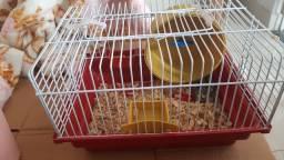 Vendo hamster anão russo com gaiola, bolinha e duas rações
