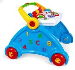 Andador Didático Brinquedo Infantil Bebê Azul Rosa Poliplac