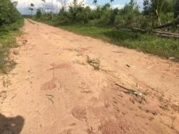 4.162 Há (Dupla - Aptidão). Bem Localizada! Sul do Pará