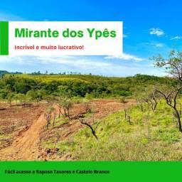 Terrenos 1000m², negociação com o proprietário