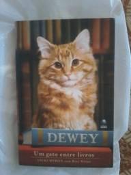 Livro um gato entre livros