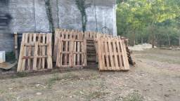 Estrado de madeira (Pallet)