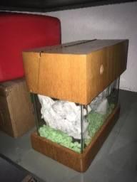 Aquário de vidro pequeno