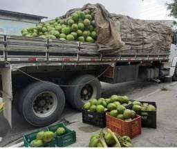 Distribuidora de coco verde(atacado) Coco de qualidade com ótimo preço WhatsApp *