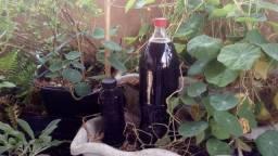 Fertilizante liquido organico