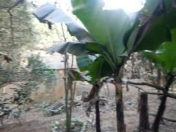 Chácara em aracariguama