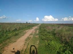 4.025 Há (Soja e Boi). Bem Localizada! Sul do Pará