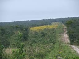 Fazenda em Salto do Céu - MT