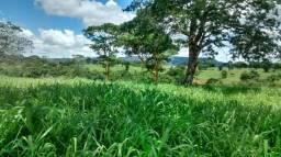 Fazenda 575 hectares em Paranatinga MT
