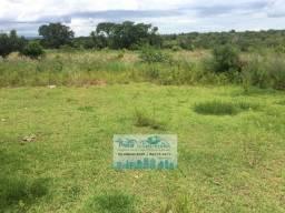 Fazenda para Pecuária 530 Hectares