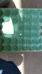 Pentes de ovos vazio