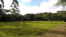 Velleda oferece ótimo sítio 2,5 hectares com casa e galpão, ac entrada