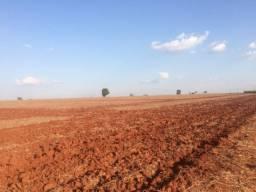 Fazenda 33 Alqueires, Frente Rodovia Castelo Branco