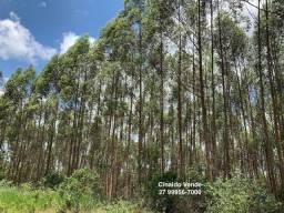 Sítio 10 alqueires (48,4 hectares) de Eucalipto em Rio Bananal ES