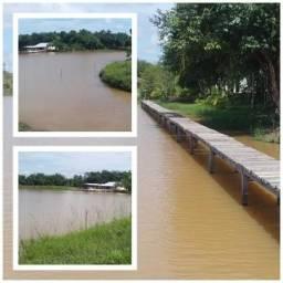 Sítio 300 hectares - 10km de Ji-Paraná