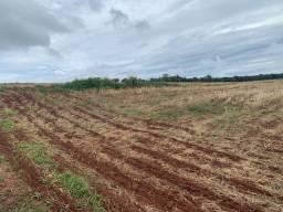 Fazenda 30 Alqueires, Próximo a Avare-Sp