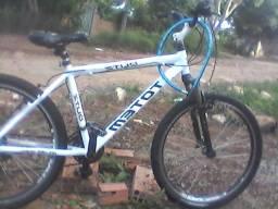 Troco bicicleta totem