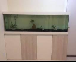 Lindo aquário com móvel