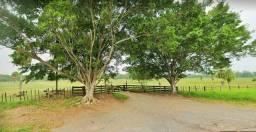 Belíssimo Sitio plano 17 ha Corumbá MS