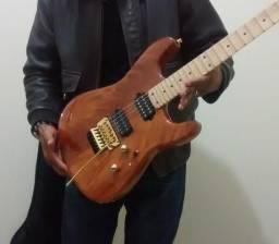 Vendo ou troco guitarra stratocaster ledur