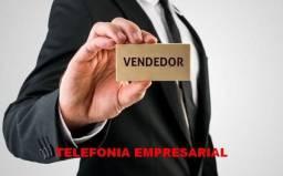 Vendedor Freelancer