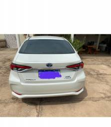 Corolla altis hybrid premium