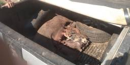 Vendo porca parida