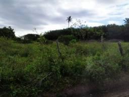 2 Tarefas de sítio no povoado  serra,  localizado em Itabaiana Itabaiana