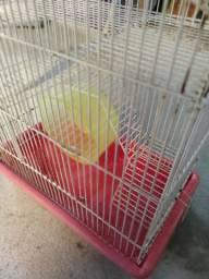 Gaiola hamster e ratinho