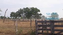 Fazenda 225 Hectares toda aberta com capim em Poconé MT