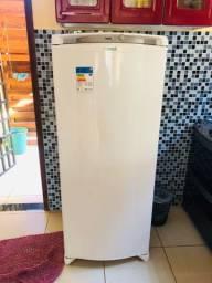 Freezer vertical nova