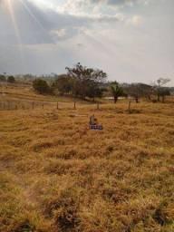Sítio com 1 dormitório à venda, por R$ 3.000.000 - Urupá - Ji-Paraná/RO
