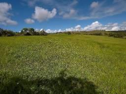 Fazenda de 200 Tarefas